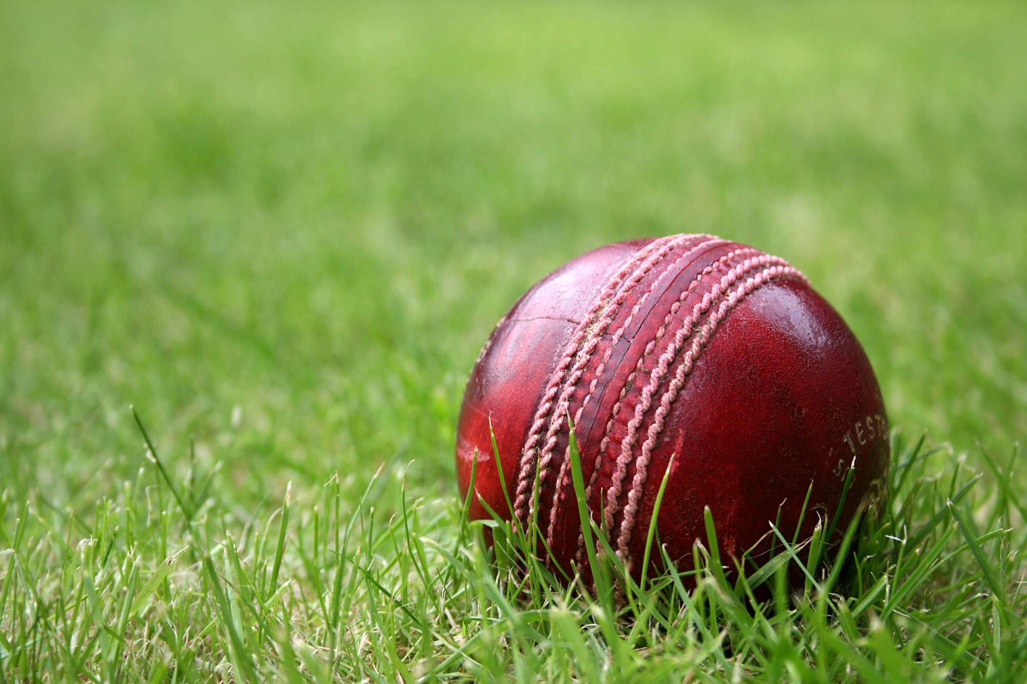 cricket-ball-grass-2